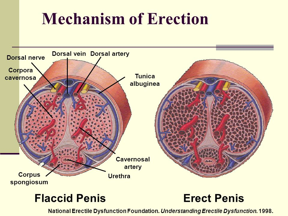 ha a fej nincs kitéve az erekció során