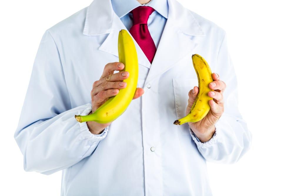 erekció során a pénisz normális)