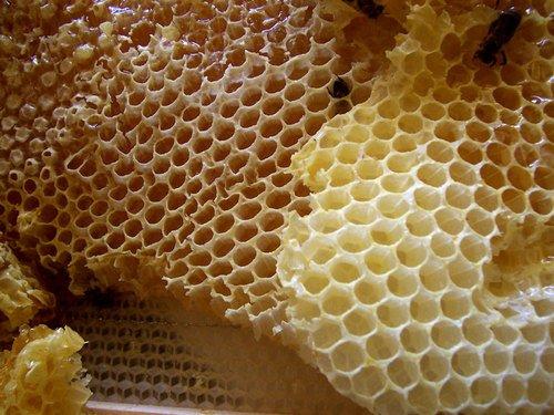 A mézeskalács tetejét le kell kenni tojással?