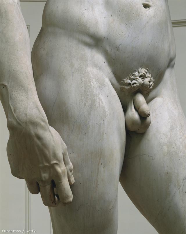 kéjes pénisz