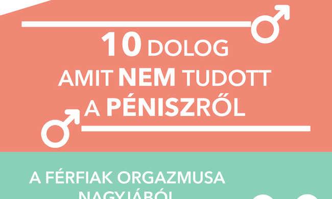 merevedéssel a pénisz nem nyitja ki magát)