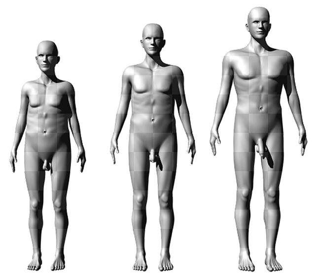 pénisz és a női test