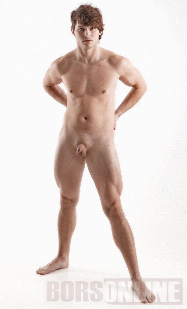a férfiak legnagyobb péniszei