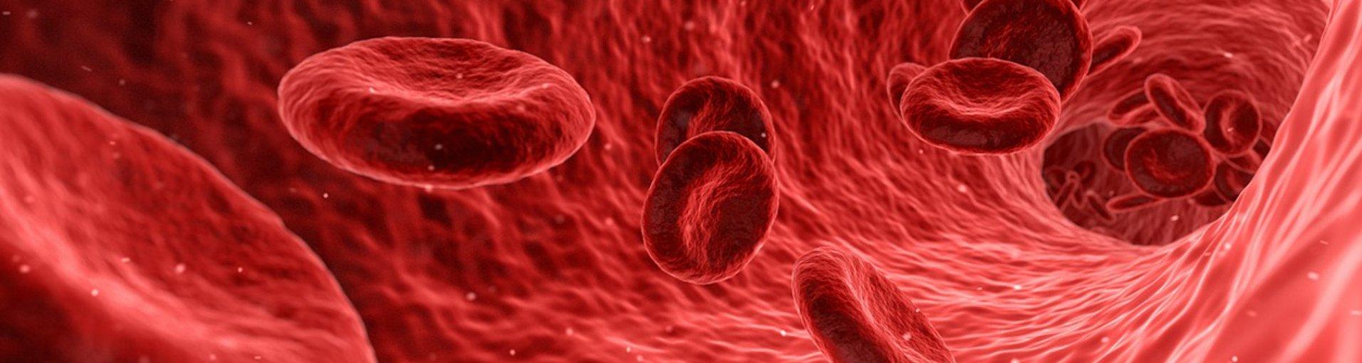 E. coli férfiak péniszében