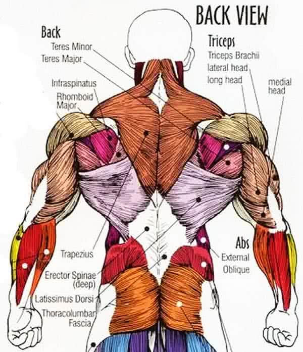 Az alsó hátfájás okai a férfiakban - Kyphosis September
