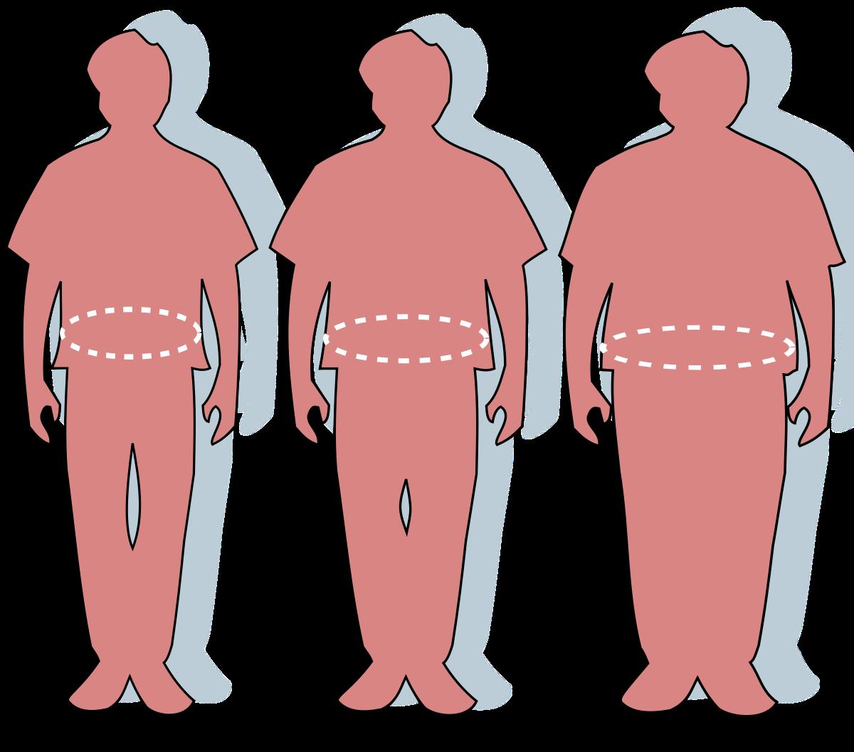 Elnőiesedett férfiak - A túlsúly nem csak az egészségnek árt
