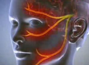 erekció során a fej nem nyílik ki teljesen