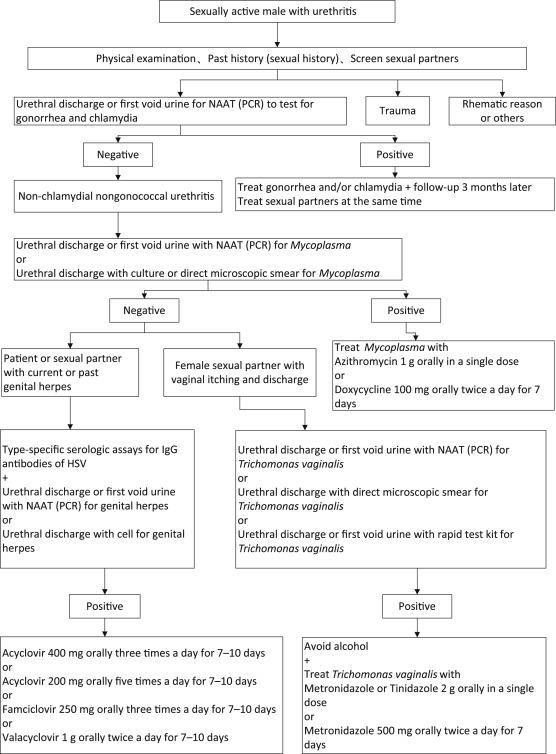 Urethritis non-gonorrhoica chronica