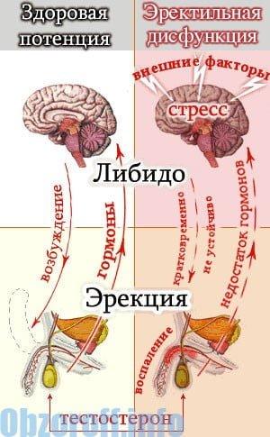 4 hatékony fenék erősítő gyakorlat