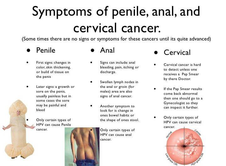 pénisz és annak jelei